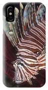 Indonesian Lionfish On A Wreck Site IPhone Case