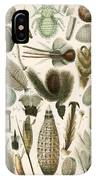 Insect Microscopy, 19th Century IPhone Case