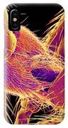 Insects Mating, Sem IPhone Case