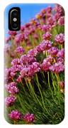 Ireland Close-up Of Seapink Wildflowers IPhone Case