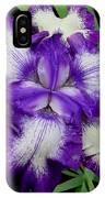 Iris Unfolded IPhone Case