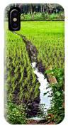 Irrigated Rice Field IPhone Case