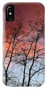 January Sunset Silhouette IPhone Case
