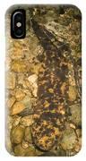 Japanese Giant Salamander IPhone Case