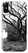 Japanese Lantern And Tree - Liliuokalani Park - Hilo Hawaii IPhone Case