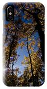 Jasper - Autumn Aspens IPhone Case