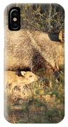 Javalina And Baby IPhone Case