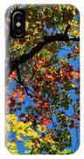 Jewels Of Autumn IPhone Case