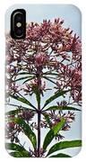 Joe-pye Weed Wildflower - Eupatorium IPhone Case