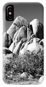Joshua Tree Center Bw IPhone Case