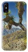 Joshua Trees Number 357 IPhone Case