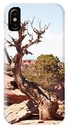 Juniper - Colorado National Monument IPhone Case