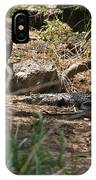 Juvenile Nile Crocodile IPhone Case