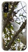 Juvenile Snowy Egret IPhone Case