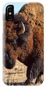 Kansas Buffalo IPhone Case