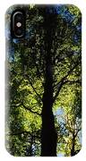 Killarney, Co Kerry, Ireland, Sunlight IPhone Case