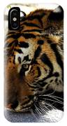 Kitty Play IPhone Case