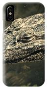 Lady Alice Queen Of The Lake IPhone Case