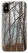 Lake Beyond The Trees IPhone Case