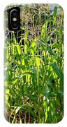 Lake Country Corn IPhone Case
