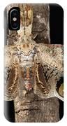 Lantern Bug Fulgora Laternaria IPhone Case