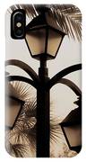 Lanterns And Fronds IPhone Case