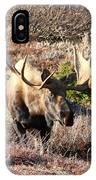 Large Bull Moose IPhone Case