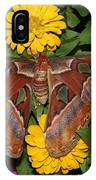 Large Moth IPhone Case