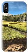 Lassen Meadows IPhone Case