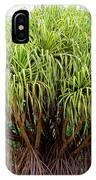 Lauhala Tree IPhone Case