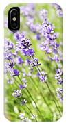 Lavender In Sunshine IPhone Case