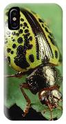 Leaf Beetle Calligrapha Sp Portrait IPhone Case