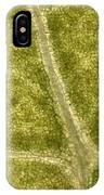 Leaf Vascularization IPhone Case
