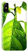 Leaves With Raindrops IPhone Case