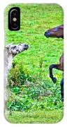 Leopard V Standardbred IPhone Case