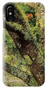 Lichen Covered Apple Tree, Walled IPhone Case
