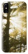 Light Beams Shining Through Trees And Fog IPhone Case