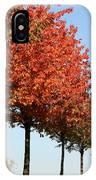 Line Of Autumn Trees IPhone Case