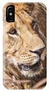 Lioness Hiding IPhone Case