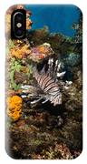 Lionfish, Fiji IPhone Case
