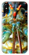 Live New England American Lobsters From Cape Cod IPhone Case