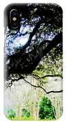 Live Oak At Capitol Lakes Park IPhone Case
