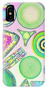 Lm Of Fossilized Diatoms IPhone Case