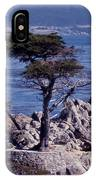 Lone Cypress By The Sea IPhone Case
