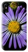 Long Leaved Aster IPhone Case
