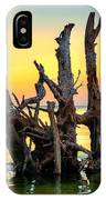 Longboat Key Tree IPhone X Case