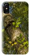 Looking Up At A Tree Trunk IPhone Case
