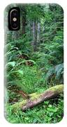 Lush Rain Forest In Olympic National Park IPhone Case