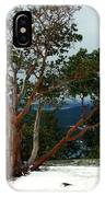 Madrone On Young Hill IPhone Case