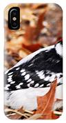 Male Downy Woodpecker 4 IPhone Case
